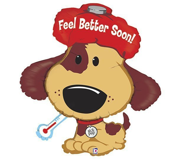 get well feel better soon dog bridal clip art free bridal clip art free