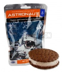 Astronaut_Cookie_51e22bb3d797c.jpg