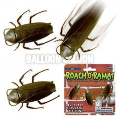 roach-o-rama-cockroach-racing-crawlers_118373_500