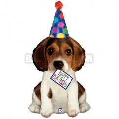 35561_BirthdayPuppy