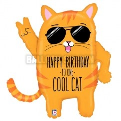 35679_CoolCatBirthday